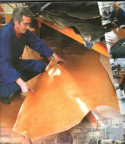 Leather - Quality & Terminology